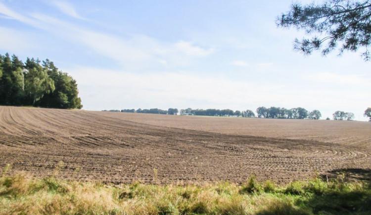 Vláda schválila novelu zákona o zemědělském půdním fondu
