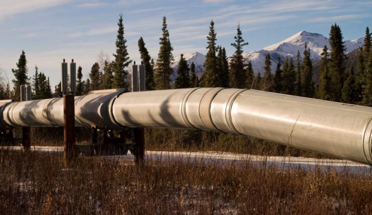 Glosa dne: Nízká cena ropy tlačí inflaci dolů