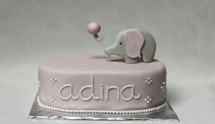Slon k druhým narozeninám