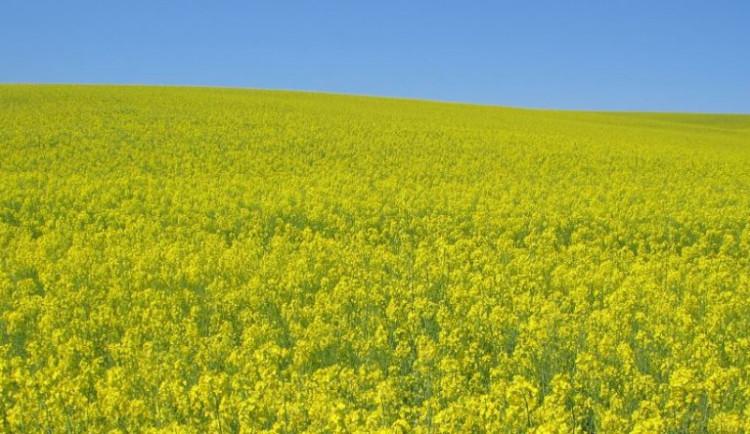 Daňová podpora biopaliv by mohla skončit k 30. červnu