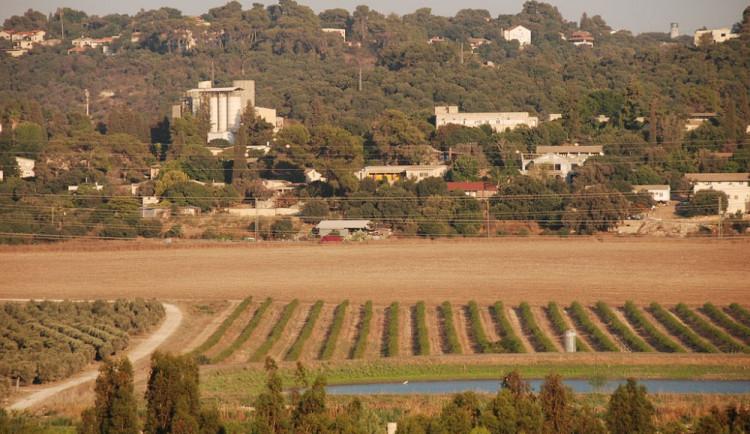 EK schválila pokyny jasného označování zboží ze židovských osad