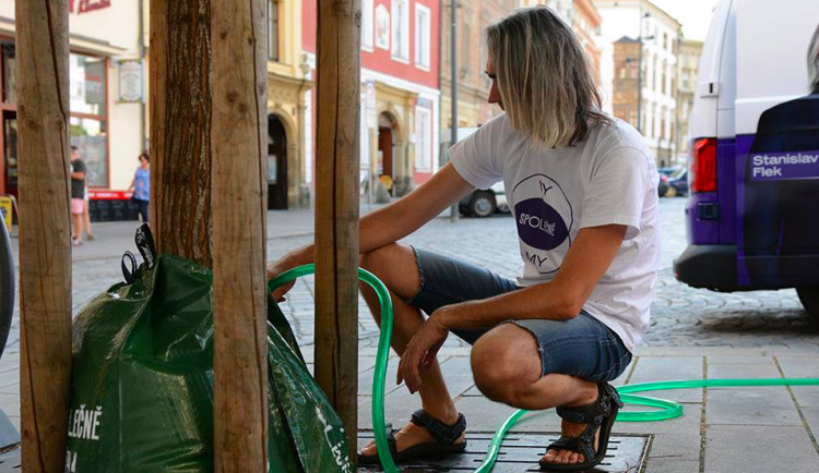 Město kritizuje hnutí spOLečně za přelití stromů v centru. V takovém horku to není možné, reaguje hnutí