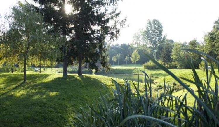 Údržba parků stojí Prahu ve vedrech miliony. Jedno zalití stromu znamená i sto litrů vody
