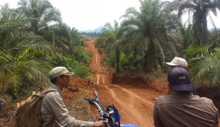 Češi zachraňují helikoptérou slona vIndonésii, armáda asistuje