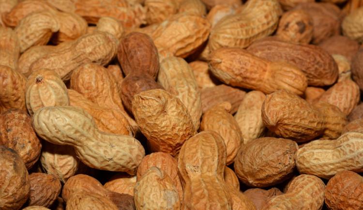Test arašídů: plísní se nemusíte bát