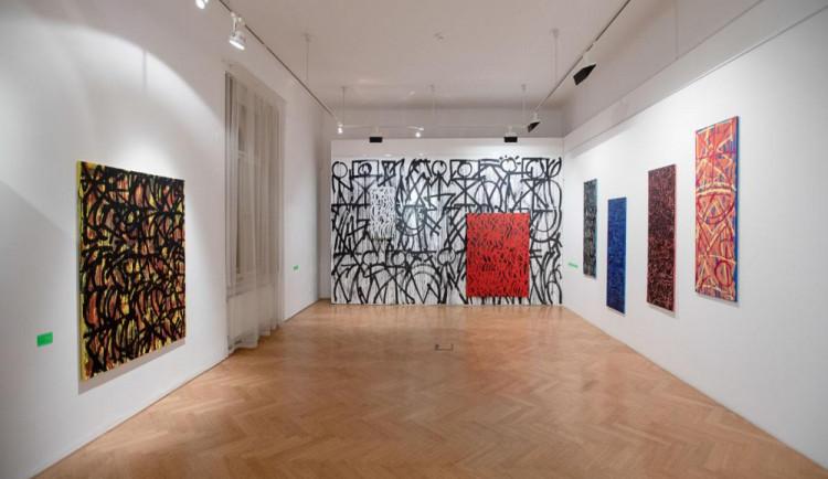 FOTO: Umělec Michal Škapa zahájil výstavu Babylon ve Villa Pellé
