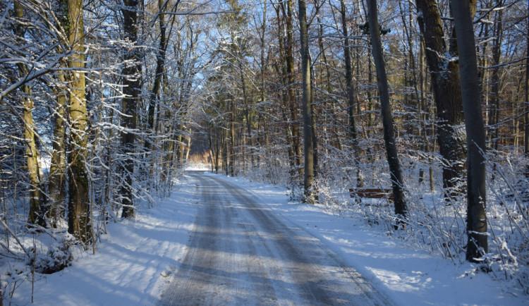 Sněžení zkomplikovalo sjízdnost v několika krajích