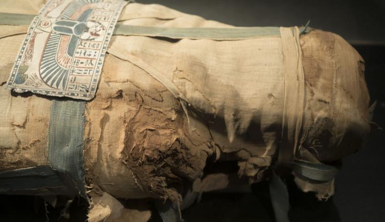 Při letištní kontrole v Egyptě objevili kusy mumií
