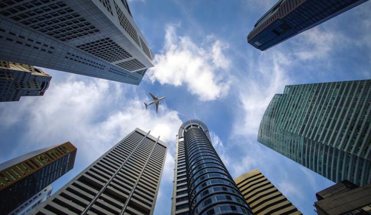 U amerických mrakodrapů hyne ročně 600 milionů ptáků