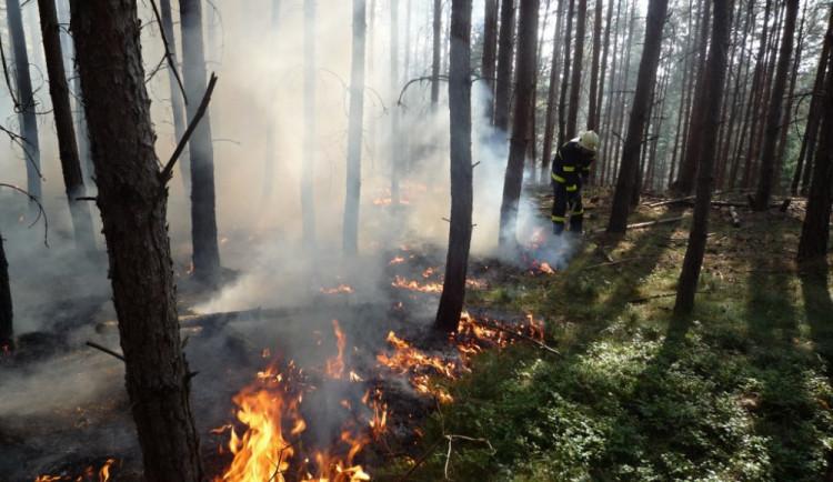 V Praze se nesmějí od neděle kvůli suchu rozdělávat ohně