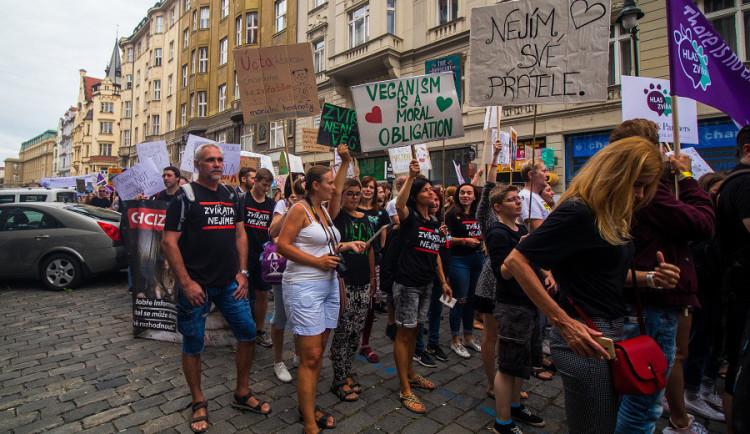 Kočka, pes i kráva, mají svoje práva! Volali lidé v rámci pochodu za práva zvířat.