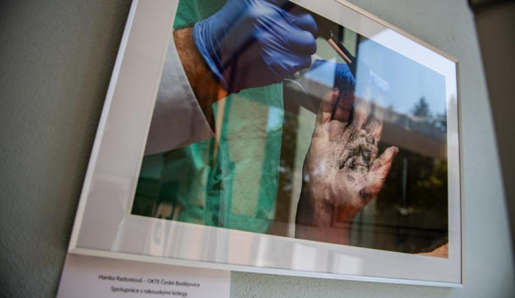 Fotostopa 2019: Průstřel žebra i oběšenec za ranního úsvitu, policie vystavuje fotky z místa činu
